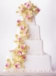 Свадебный торт 005